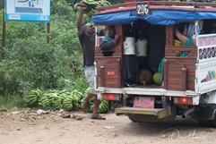 Loading bananas on bus