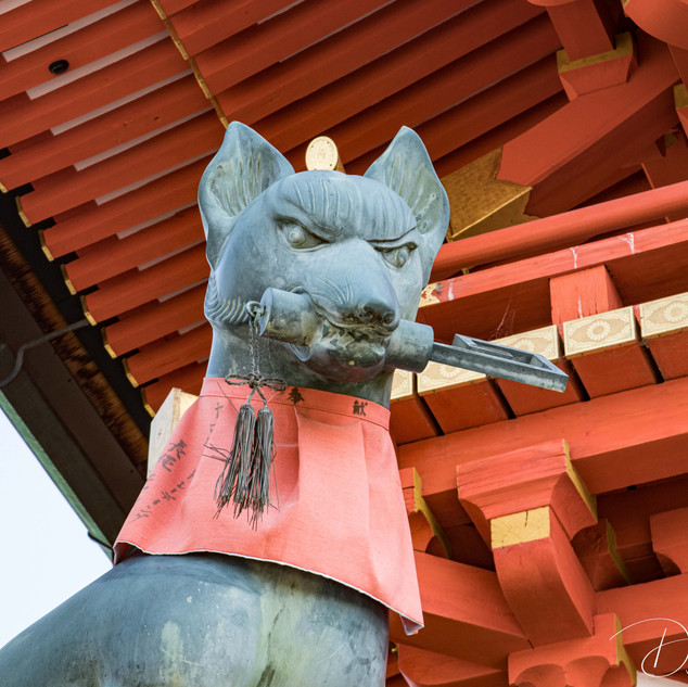 Kyoto, Japan Fushimi Inari Shrine 1000 T