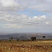 Serengeti as far as the eye can see