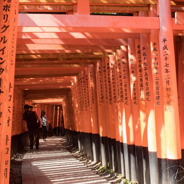 Kyoto, Japan Fushimi Inari Shrine