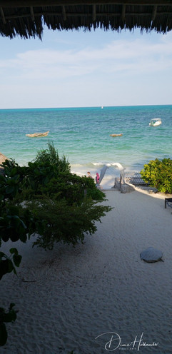 Jambiani. View of Indian Ocean