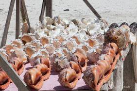 Zanzibar Shells for sale on the beach