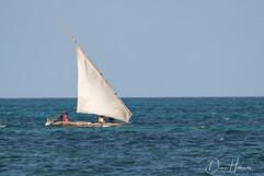 Zanzibar Dhow