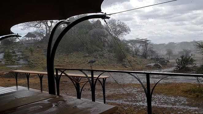 The Short Rains