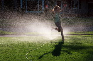Here Comes the Sun:  Water Conservation Strategies for the Summer
