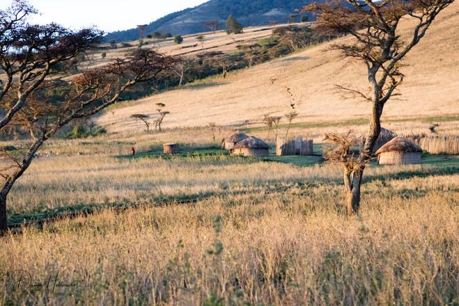 Maasai village-Kraal