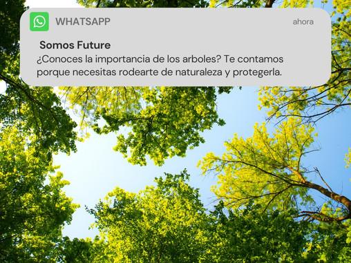 ¿Hace falta un impulso a los ayuntamientos para plantar árboles?