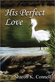 His Perfect Love as seen on Amazon.jpg