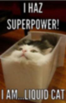 171 liquid cat.jpg
