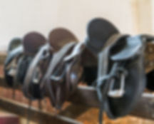 Saddle Fitting Course Learn how to fit a saddle for both horse and rider