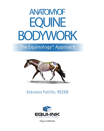 Anatomy of Equine Body Work -The Equinology® Approach