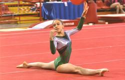 Alice Castellari