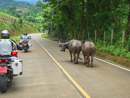 4 BUCKET LIST bike experiences from DART Asia for 2019!