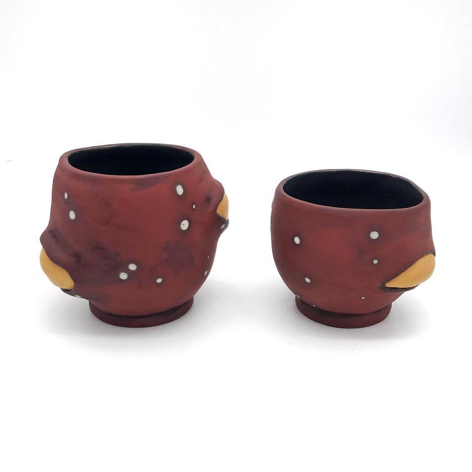 Seed Pod Cup Set