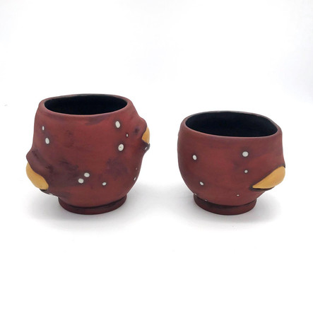 Seed Pod Cup Set