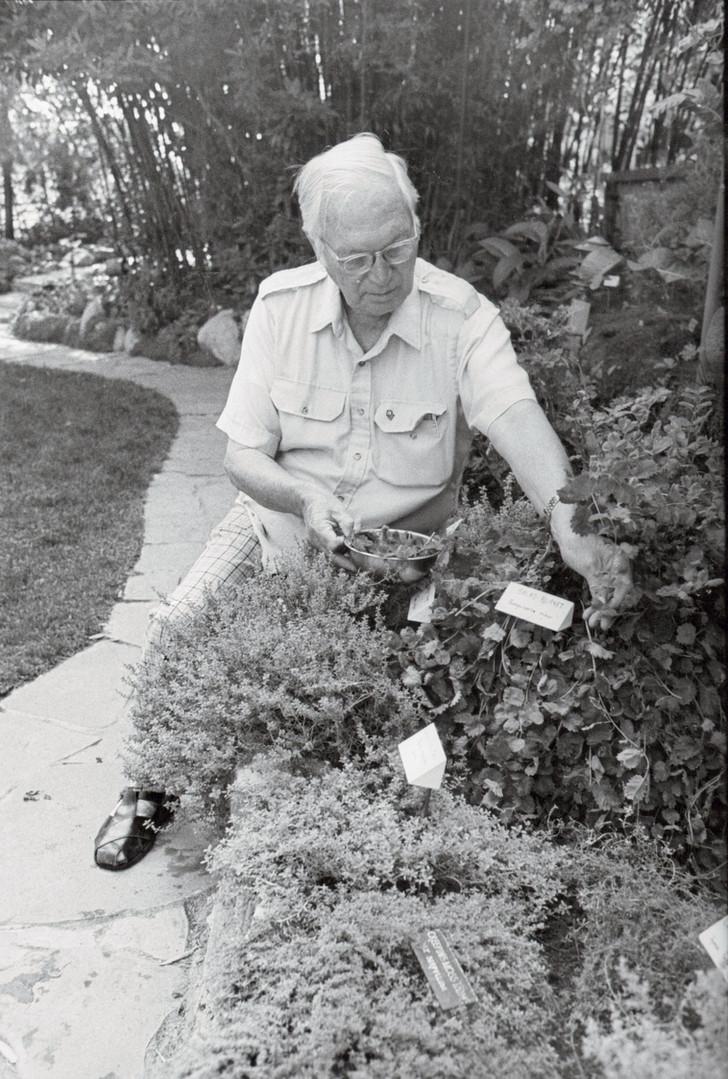 Alan Hooker in his herb and vegetable garden.