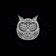 OWL copia.png
