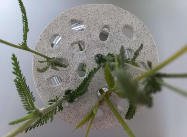 studio-grey-on-grey-floral-arranger-flower-frog-5.jpg