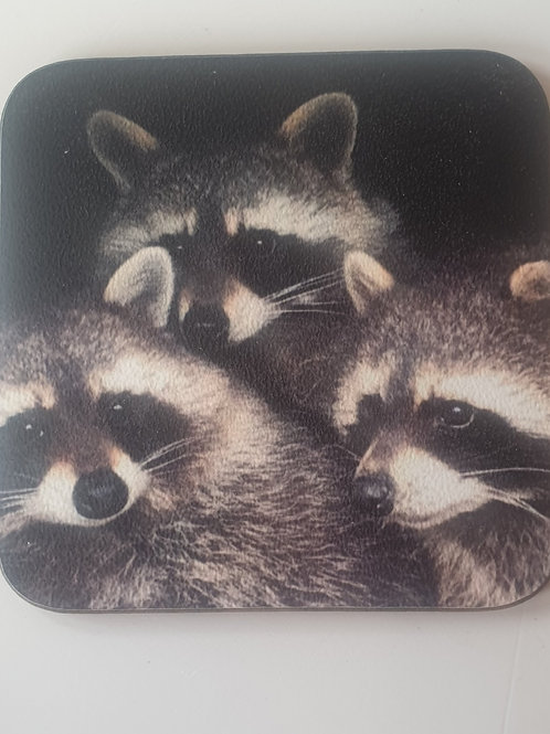 """Raccoons"" Coaster"