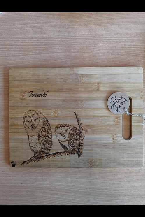 Barn Owl Hand made decorative board
