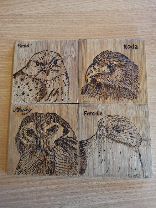 Pack of 4 Pyrography Coasters - Hand Made