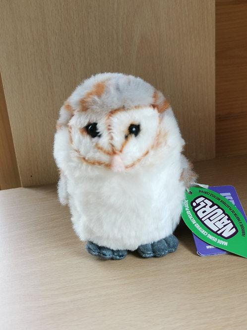Small Barn Owl