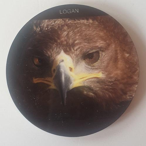 """""""Logan"""" Steppe Eagle Magnet"""