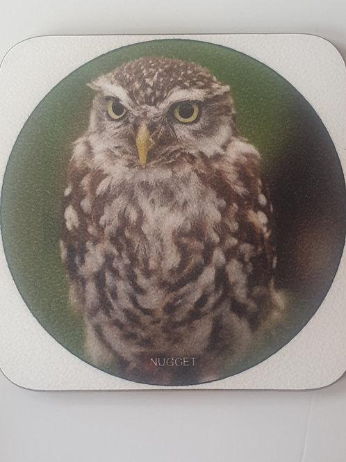 """Nugget"" Little Owl Coaster"