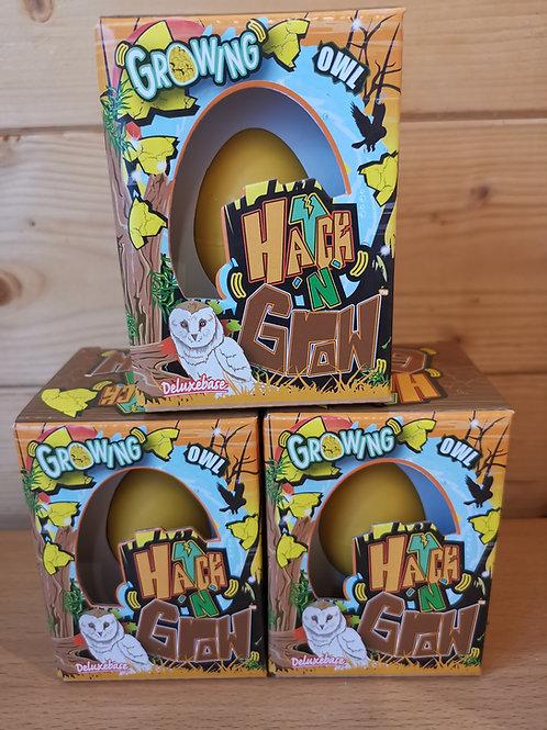 Hatch & Grow Owl Egg
