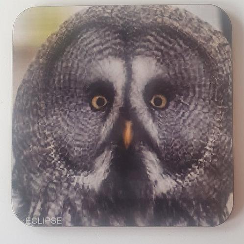 """Eclipse"" Great Grey Owl Coaster"