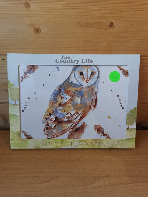 Barn Owl placemats (4)