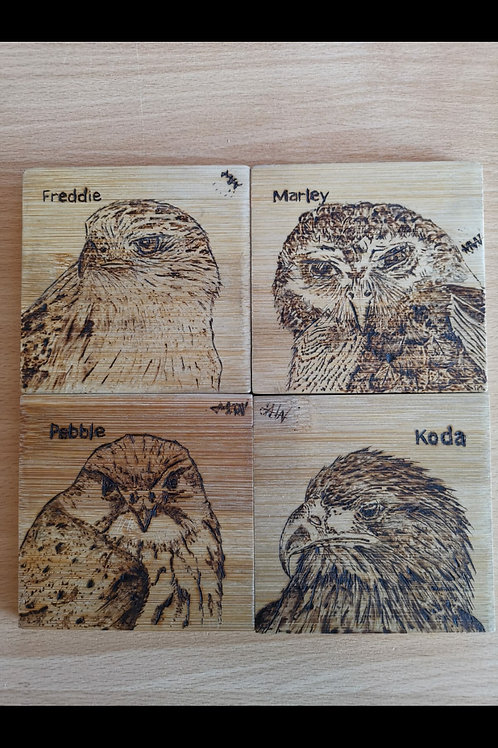 Wild Wings Named Birds Coaster set of 4 handmade