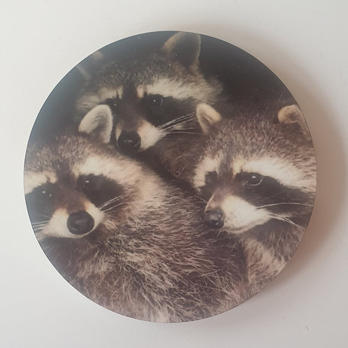 """Raccoons"" Magnet"