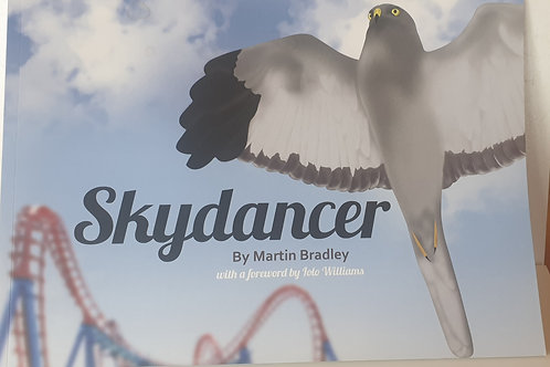 """Skydancer"" by Martin Bradley"