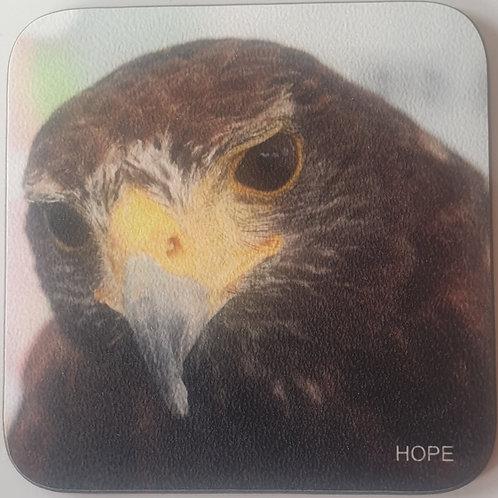 """""""Hope"""" Harris Hawk Coaster"""