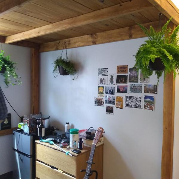 Adding some Plants