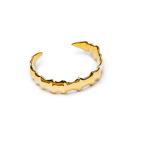 Spine bracelet