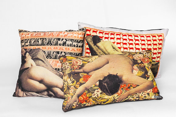 Found Muses of Lost Walls Cushions