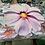 Thumbnail: Spring Spring Giant Placemats