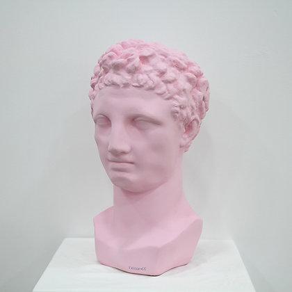 Pink hermes