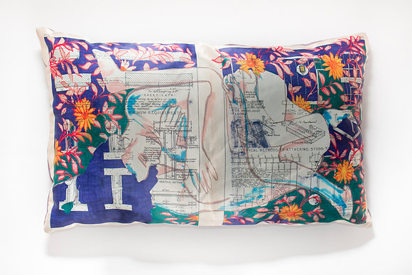 Astronomical Diaries Cushions