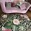 Thumbnail: Bungee Jumping in Flowers Carpet