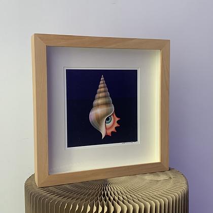 Ana Miminoshvili framed print