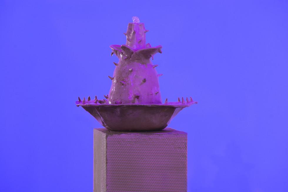 Untitled (spiky flower fountain)