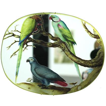 Bird nose -mirror