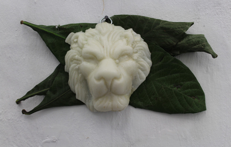 Lion with large green thing