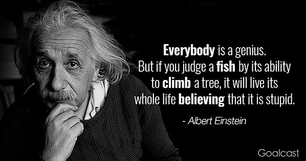 Albert-Einstein-quotes-Genius1.jpg