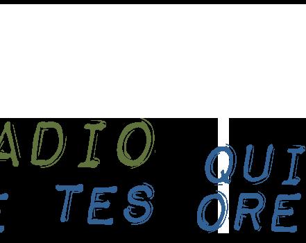 Ouça a Rádio DELTA | O tema de hoje é o «Punk». Assista ao vivo.