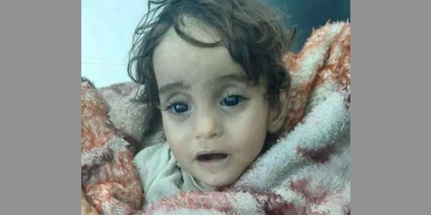 O My Fraternity não esquece Iman Laila, a menina síria que morreu de frio nos braços do pai