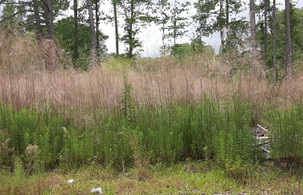 Vacant lot in Harnett County, NC 0.26 Acres - $9,999